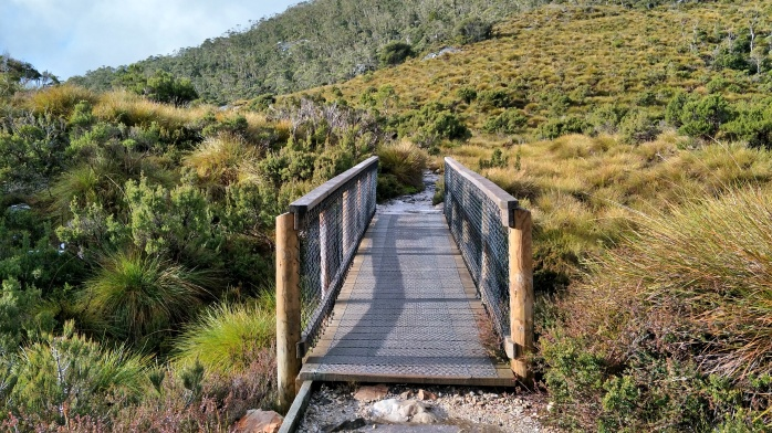 A board walk at the start of the Dove Lake Walk