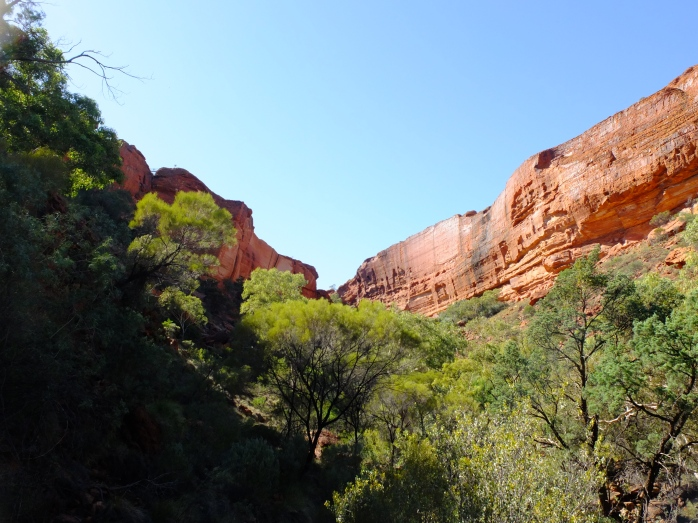 The view of the canyon walls from the velley