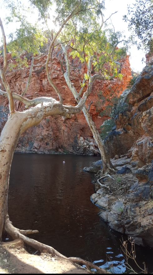 Ellery Creek Big hole filled to the brim with water