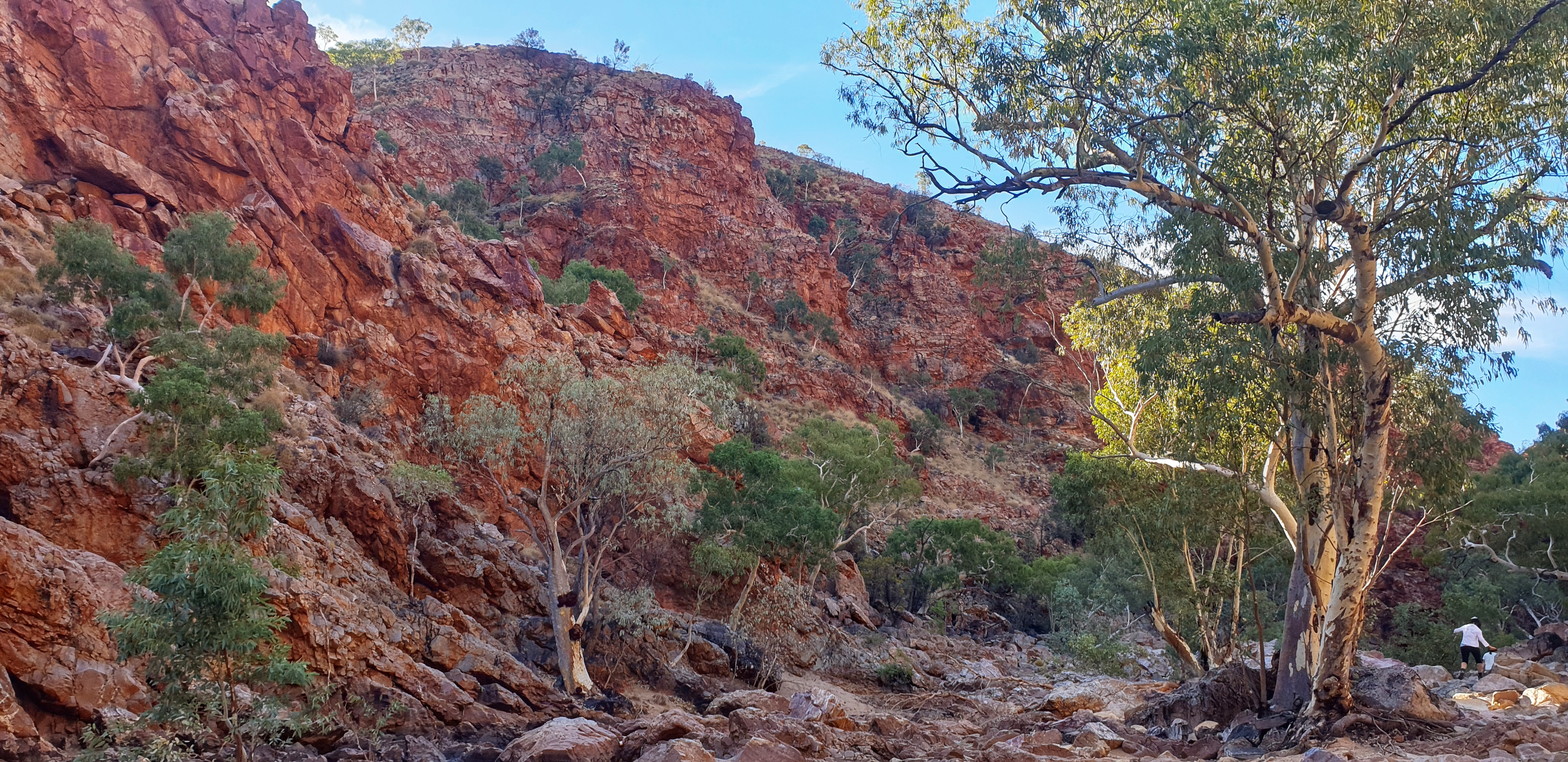 The red rocks of the West MacDonnell Ranges during the hike to Red Bank Gorge