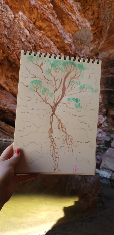 I'm holding a painting of a tree growing our of the side of Simpson's Gap, Alice Springs