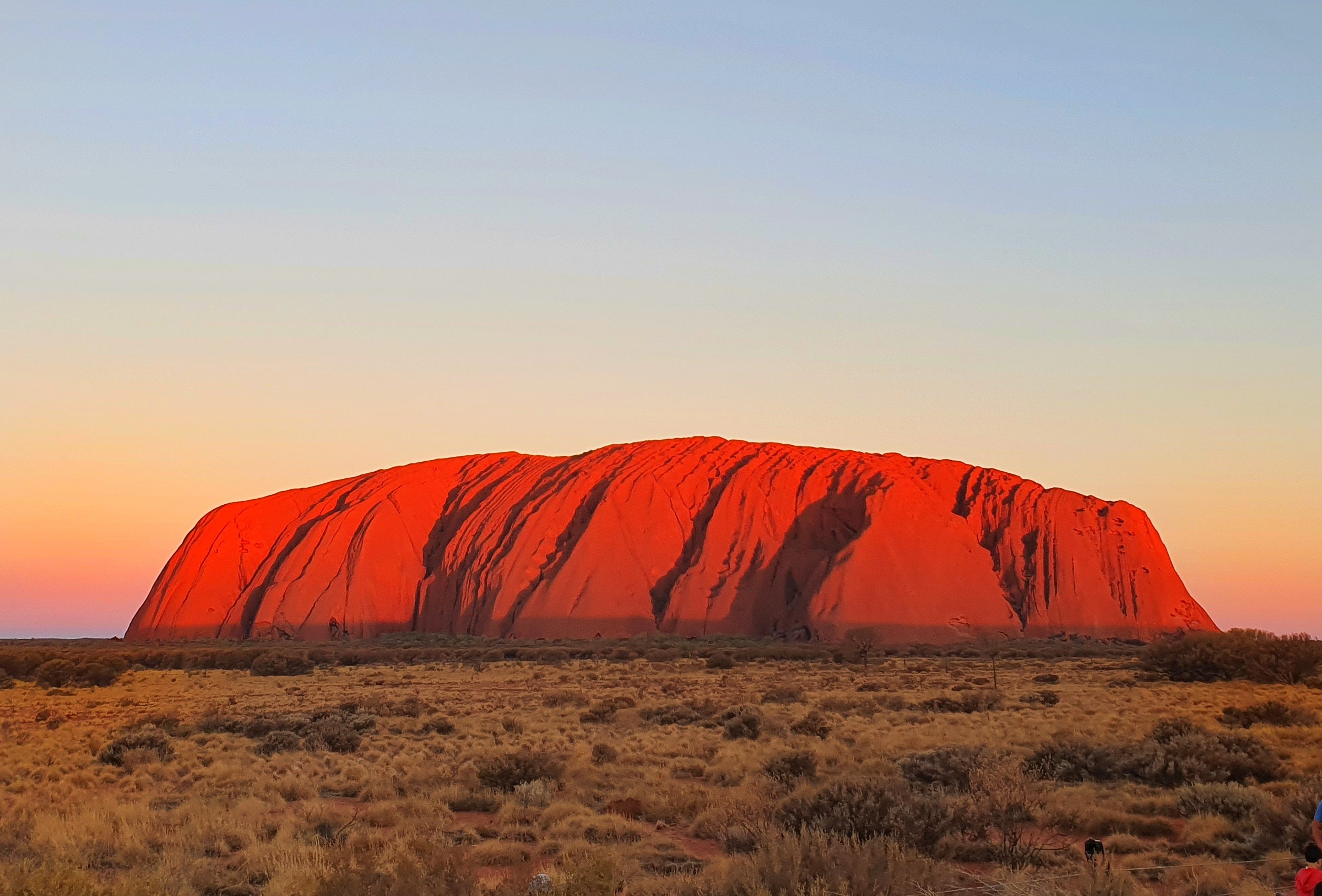Red Uluru at sunrise